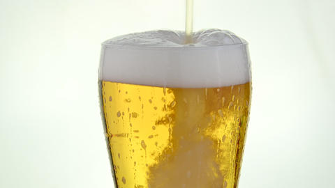 Close up pouring lager beer in glass over white Live Action