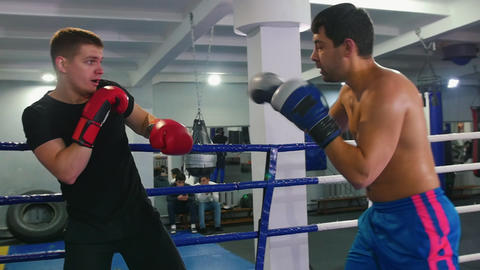 Box training - two men having a fight on the boxing ring Live Action
