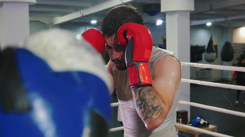 Box training - two sweaty men having a fight on the boxing ring - drives a man Live Action
