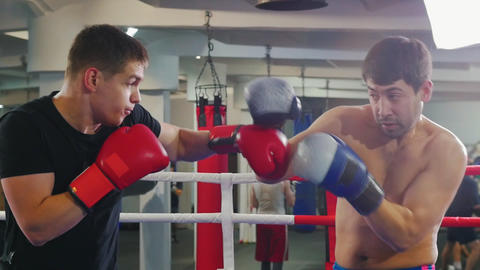 Box training in the gym - two men having an aggressive fight on the boxing ring Live Action