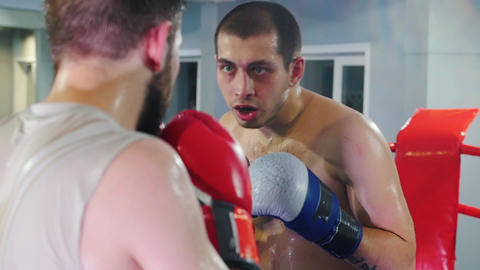 Box training in the gym - two men with mouth guard having a fight on the boxing Live Action