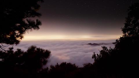 Fog Covering Los Angeles Footage