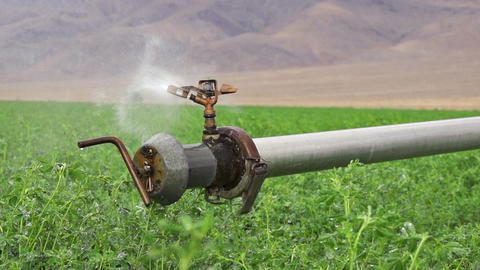 Farm Irrigation Sprinkler Slow Motion Footage