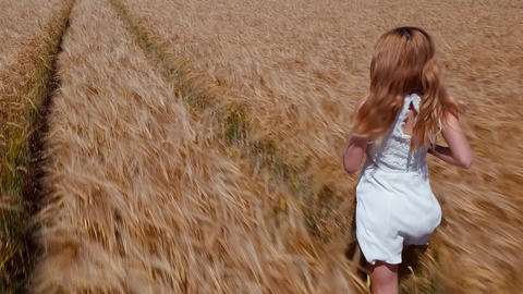 Slow motion - Young woman running in the wheat field at daytime Footage