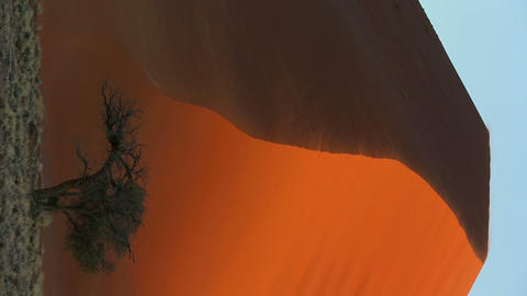 Namibia Sand Dunes Vertical Footage
