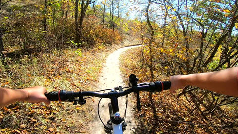Girl rides a bike along a path in a pine forest in the autumn with sunlight Live Action