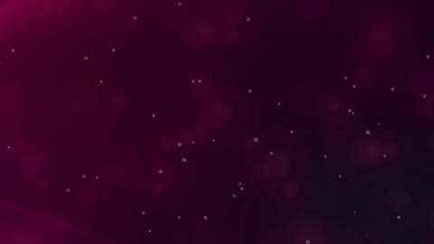 Romantic flying pink particles Animation