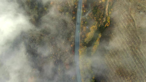 AERIAL Cars driving along country road through autumn forest aerial top down GIF