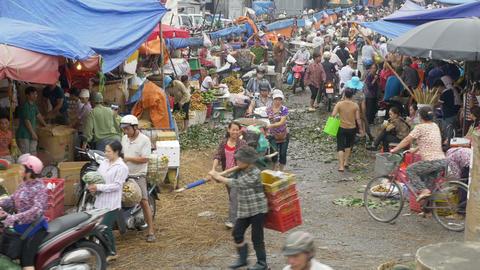 Busy Farmer's Market In Hanoi Vietnam Footage