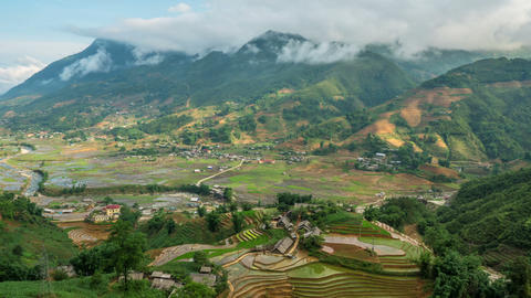 Terraced Rice Paddies In Northern Vietnam Footage
