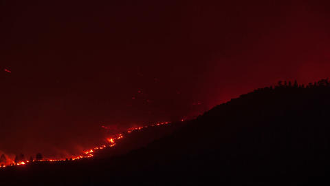 Forest Fire Burning Mountainside Live Action