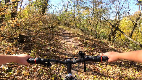 Girl rides a bike along a path in forest in the autumn with sunlight Live Action