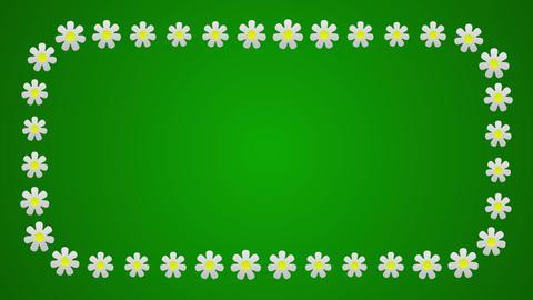 Flowers frame screen border animated background Animation