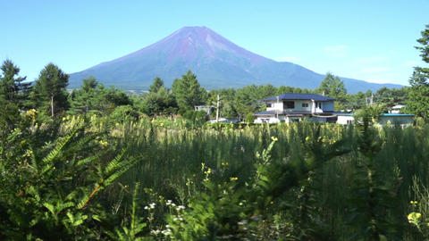 Image views of the early summer of Fuji while walking Footage