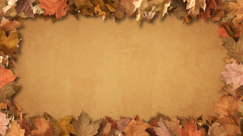 Autumn Leaf Frame Background CG動画素材