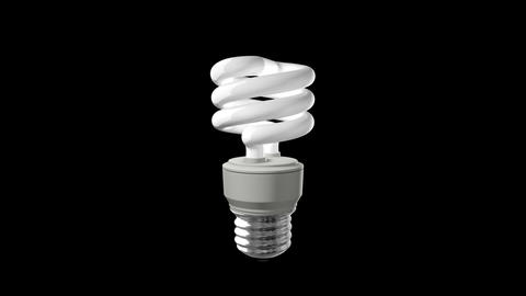 Compact Fluorescent Light Bulb Animation