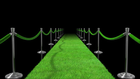 Walk Down The Green Carpet Loopable Animation