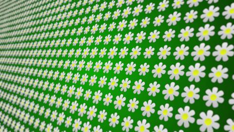 Flowers pattern close up animated background Animation