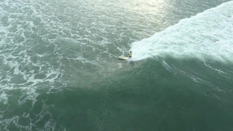 Extreme water sport, woman is gliding on water using surfboard, ocean Live Action