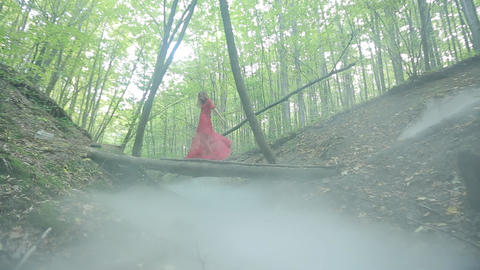 Gorgeous Lady In A Mysterious Foggy Forest Live Action