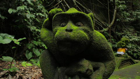 Old statues covered in moss, in an ancient park on Bali, Indonesia, close up Live Action