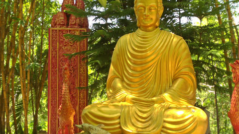 Close Golden Sitting Buddha among Plants in Temple Park Live Action