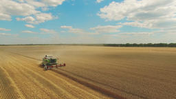 Flight over wheat rye field, harvester aerial 4k video. Harvest agriculture farm Footage