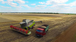 Working harvester combine unloads grain to farm vehicle truck. Harvest 4k video Footage