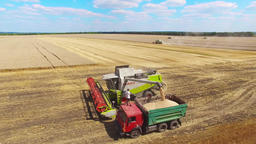 Combine harvester unloads grain farm vehicle truck. Harvest agriculture 4k video Footage