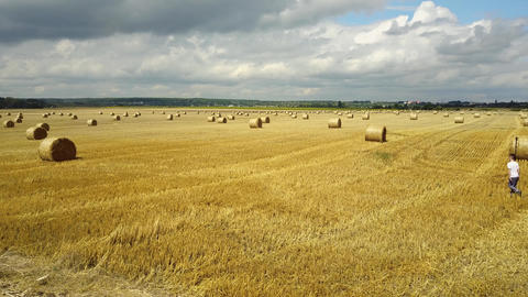 Field With Straw Bale Live Action