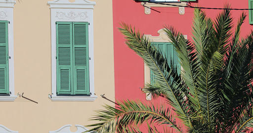 Shutters Of Colorful Houses Behind Branches Of A Palm Tree GIF
