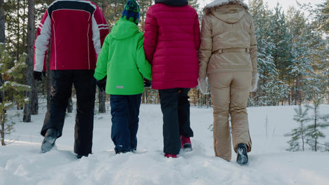Rear view family walking on snowy path in winter forest low angle view. Mom, dad Live Action