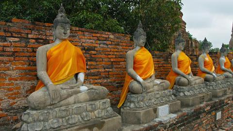 Row of Buddha Statues. Draped in Yellow at Wat Yai Chai Mongkhon in Ayutthaya. T Footage