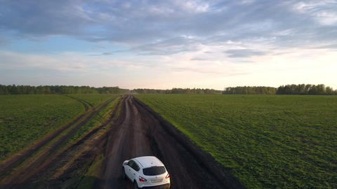 white car drives along long dirty road crossing green fields Live Action