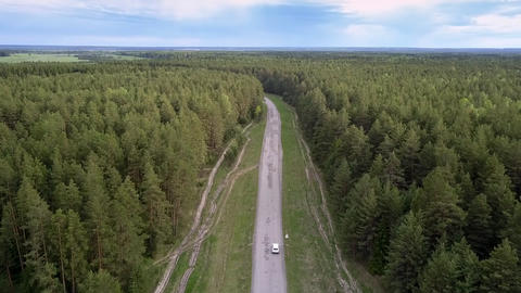 modern vehicle drives along gray road among endless forest Live Action