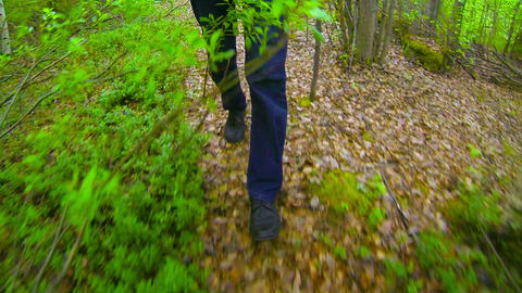 Man is walking in the autumn forest. Legs close up Footage