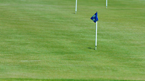 Blue Checkered Flag Marks the Hole on a Golf Course Footage