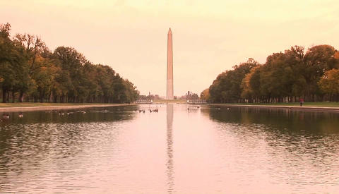 The Washington Monument rises above the reflecting pool... Stock Video Footage