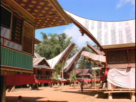 A Sulawesi, Indonesia village contains longhouses Footage