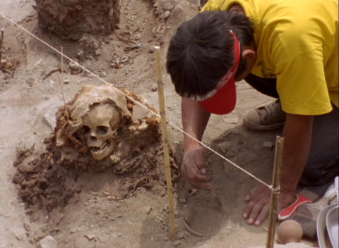 Medium-shot of an archaeological worker carefully brushing dirt from a site containing a human skull Footage