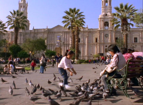 Pan of a little girl playing with pigeons in a plaza in... Stock Video Footage