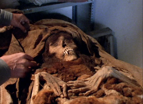 Close-up of a man uncovering a human skeleton in an archaeological laboratory Footage