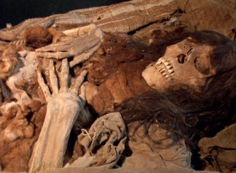 Panning-shot of a skeleton lying in an archaeological... Stock Video Footage