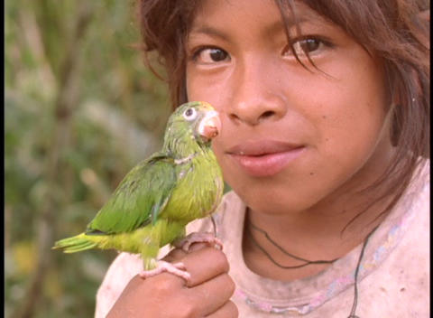 Close-up of a young girl holding a baby parrot in the Amazon rainforest Footage