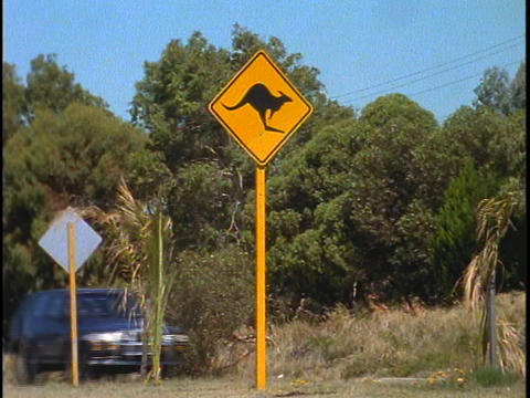 A kangaroo street sign is posted along a busy highway in... Stock Video Footage