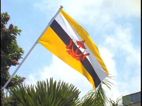 A Brunei flag flies against the sky in Borneo Footage