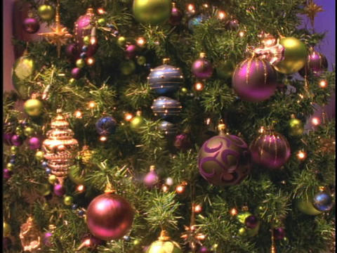 Glass ornaments of purple, maroon and blue decorate the branches of a Christmas tree Footage