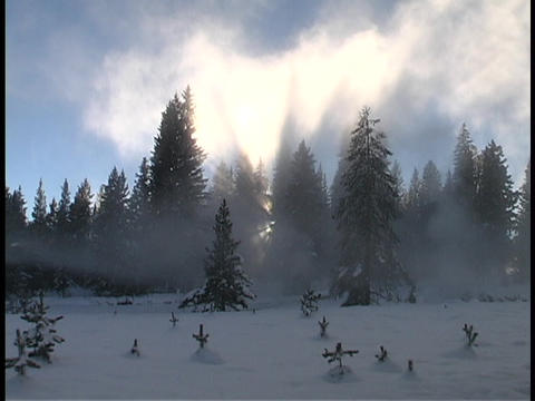 Sun rays shine above a winter snow scene Stock Video Footage