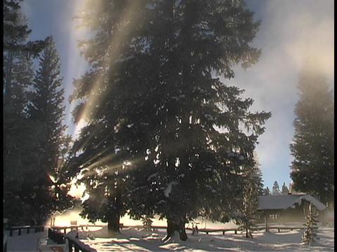 Sun rays shine above a winter snow scene Stock Video Footage