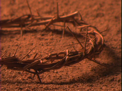 Dust blows beneath a crown of thorns Stock Video Footage